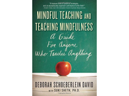 Imagen Mindful Teaching and Teaching Mindfulmess: A guide for anyone who teaches anything