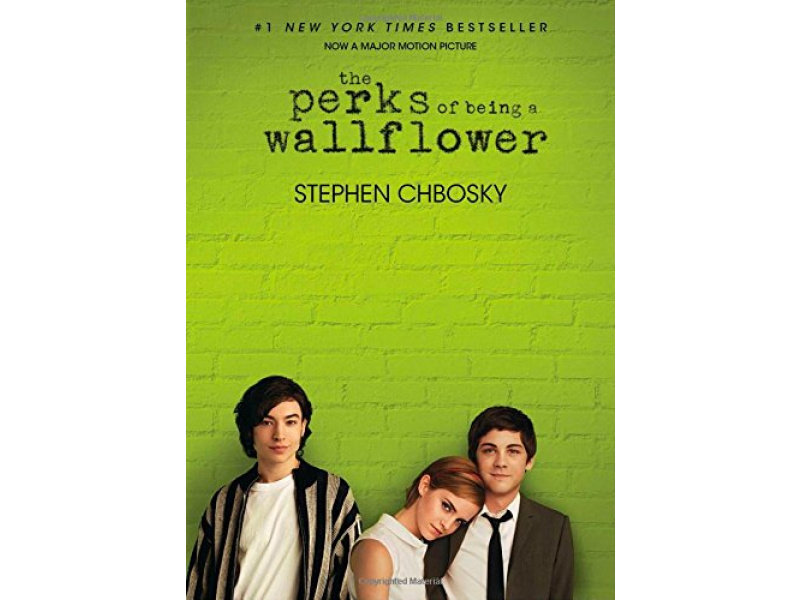 Imagen The Perks of Being a Wallflower 1